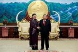 Lãnh đạo Đảng Chính phủ Lào tiếp Đoàn cấp cao Quốc hội Việt Nam