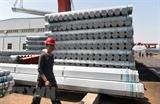 Xuất khẩu nông nghiệp của Mỹ sang Trung Quốc được dự báo tăng 40%