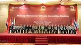 Субрегион Большого Меконга активизирует борьбу с наркотиками
