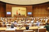 Мнения участников 5-й сессии Национального собрания 14-го созыва
