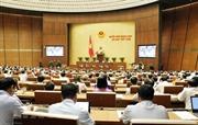 Quốc hội thảo luận về quản lý sử dụng vốn nhà nước tại doanh nghiệp
