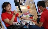 Программа Красный маршрут - 2018 и празднование Всемирного дня донора крови
