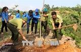 Во Вьетнаме отметили День борьбы с опустыниванием и засухой