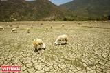 ASEM: Partage dexpériences sur la résilience au changement climatique
