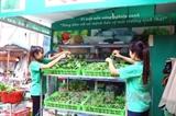 Вьетнам поделился опытом в развитии зеленого сельского хозяйства в ЭКОСОС