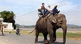 Национальный парк Вьетнама переходит на новую модель туризма