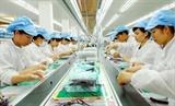 IMF: Kinh tế Việt Nam có thể đạt tăng trưởng hằng năm 65%