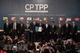 Việt Nam cùng các nước thúc đẩy Hiệp định CPTPP sớm có hiệu lực