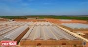 Kinh tế nông nghiệp trên vùng tiểu sa mạc