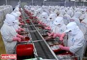 东盟渔业如何看待欧盟黄牌