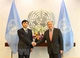 Việt Nam tích cực chủ động tham gia các diễn đàn Liên hợp quốc