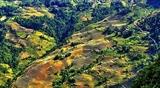 Стартовал фотоконкурс посвященный красоте Хажанга