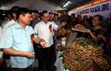 Открылся фестиваль лонгана Хынгйен