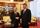 Ông Tập Cận Bình: Trung Quốc hết sức coi trọng quan hệ với Việt Nam