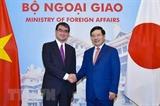 Phó Thủ tướng Phạm Bình Minh đồng chủ trì phiên họp Ủy ban Hợp tác Việt Nam-Nhật Bản lần thứ 10