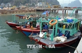 Fishing to be forbidden in Ha Long Bays natural reserves
