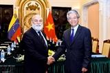 В Ханое прошла политическая консультация на уровне замминистров между Вьетнамом и Венесуэлой