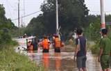 Вьетнам и Япония сотрудничают в управлении стихийными бедствиями