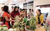 Phát triển du lịch - cơ hội khởi nghiệp đổi mới sáng tạo vùng đồng bằng sông Cửu Long
