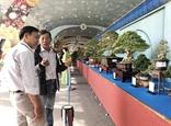 Khai mạc Lễ hội Bonsai  Suiseki châu Á - Thái Bình Dương lần thứ 15 - 2019