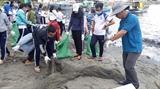 Город Фукуок обязался снизить пластиковые отходы