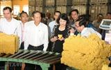 Вице-президент Вьетнама провела рабочую встречу с Корпорацией резиновой промышленности Вьетнама