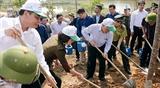 Запущен Тэт посадки деревьев в вечную благодарность Дядюшке Хо 2019 г.
