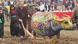 Торжественный праздник начала обработки земли 2019 в общине Дойшон
