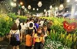 Более одного млн. человек посетили праздник весенних цветов в г.Хошимине