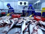 Вьетнам стремится учеличить экспорт морепродуктов до 10 млрд в 2019 году