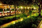 Cù lao Tân Phong phát triển du lịch sinh thái