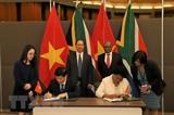 ベトナム・南ア 全面的協力を強化
