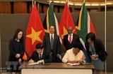 Вьетнам и ЮАР договорились активизировать отношения дружбы и всеобъемлющего сотрудничества