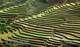 Mejoran provincias de Vietnam la conectividad turística