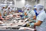 Le Vietnam vise lexportation dun milliard de dollars de thons