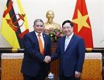 Việt Nam - Brunei thúc đẩy hợp tác song phương
