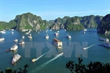 Consideran la bahía Ha Long de Vietnam entre las 25 maravillas naturales más bellas del mundo