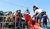 Cảnh sát biển Vùng 2 cứu hộ thành công tàu cá mắc cạn tại khu vực quần đảo Hoàng Sa