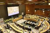 Comparte Vietnam en la ONU experiencias de desarrollo sostenible