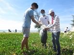 Thanh thiếu niên kiều bào tham gia làm sạch biển tại Quảng Ngãi
