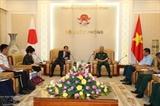 Вьетнам и Япония активизируют сотрудничество в ликвидации последствий войны