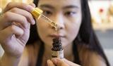 Iris NguyenとPerfumery Houseのブランドを設立