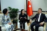 Вьетнам придает важное значение активизации многостороннего сотрудничества с Турцией