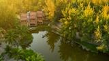 Hoài cổ giữa Hồ Tràm