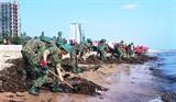 Quảng Bình chung tay bảo vệ môi trường biển hạn chế sử dụng các sản phẩm nhựa