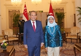 Постоянный Вице-премьер Чыонг Хоа Бинь совершает официальный визит в Сингапур