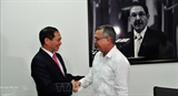Вьетнам и Куба провели политические консультации