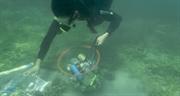 해양 플라스틱 폐기물 처리 및 방지 프로젝트