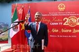 Вьетнамские диаспоры в зарубежных странах радостно встречают Тэт