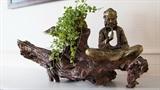 Lũa Décor:流木に新しい魂を